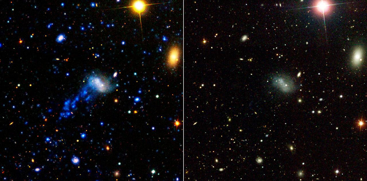 Turbulent Tale Of A Tiny Galaxy
