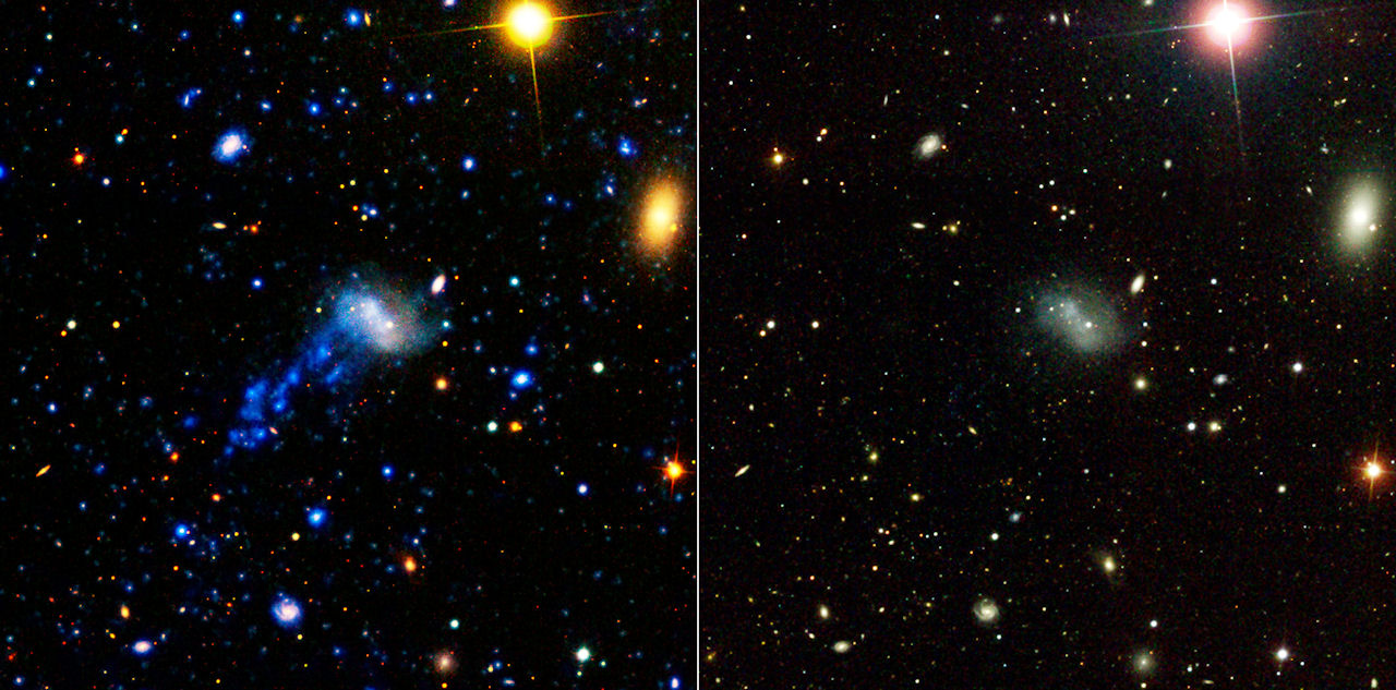 Turbulent Tale Of A Tiny Galaxy